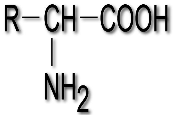 aminoacizii formula