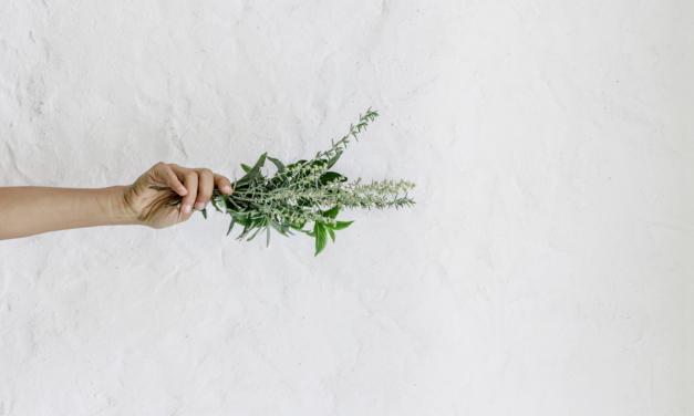 Cum se utilizează uleiul de rozmarin pentru creșterea părului